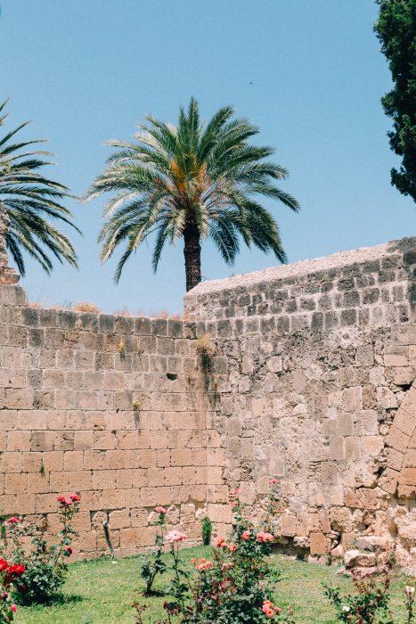 Cyprus-Kortaben-0640