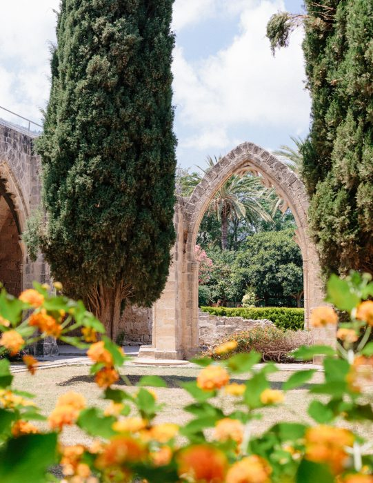 Cyprus-Kortaben-0717