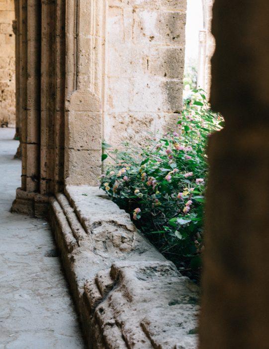 Cyprus-Kortaben-0721